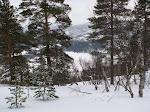 Vinteren 2009