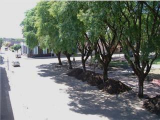 Centro de Rosario del Tala