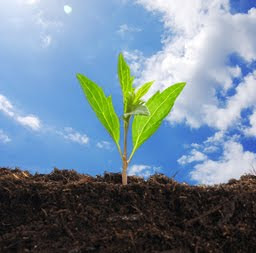 Investments with socially responsible companies