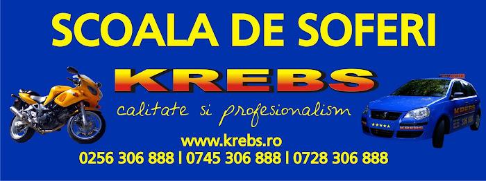 scoala de soferi Krebs Timisoara