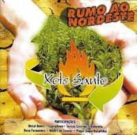 Xote Santo - Rumo ao Nordeste - Vol.5 2007