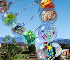 Los grandes enlaces de la Química Biológica