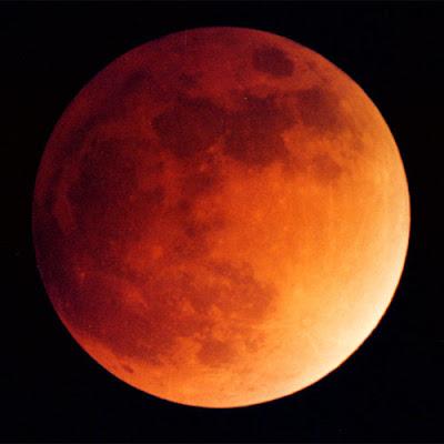 Linda foto de uma lua cheia e vermelha, tendo ao fundo um céu negro