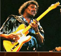 Albert Collins Ao Vivo