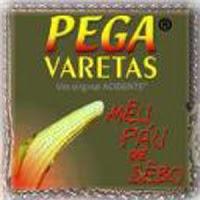 Capa do CD Pega Varetas, de 2003, é o nono disco da banda Acidente