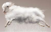 Ovelha-Nuvem