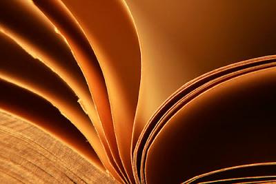 Los libros tienen la respuesta