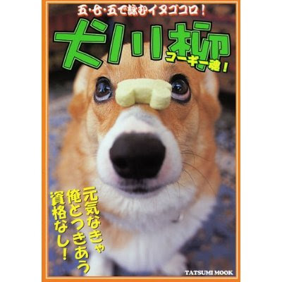 corgimag9.jpg