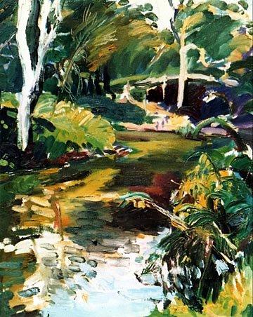 reflections on lanecove river