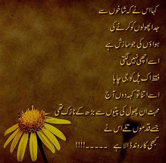 fakhira desiged poetry - nazuk