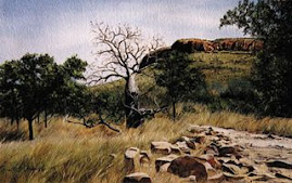 'On the way out of Emma Gorge, near El Questro Stn'