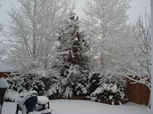Dec. 1, 2007