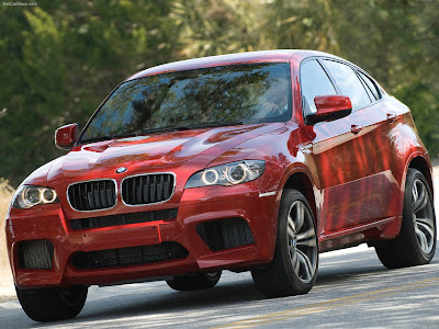 wrestler wallpaper_04. BMW X6 Wallpapers and Pictures