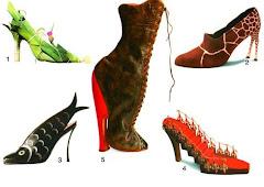 tales zapatos...tales nosotras ¿?
