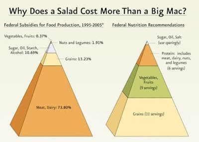The food pyramid juxtaposed to a second pyramid showing how farm subsidies are distributed, almost 74% to meat and dairy and .37% to vegetables and fruits