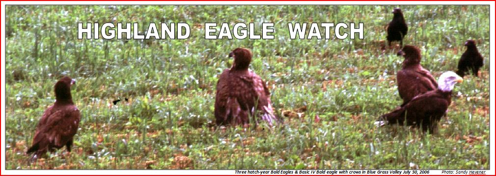 HIGHLAND EAGLE WATCH