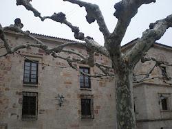 Parador de Condes de Alba y Aliste (plaza de Viriato)
