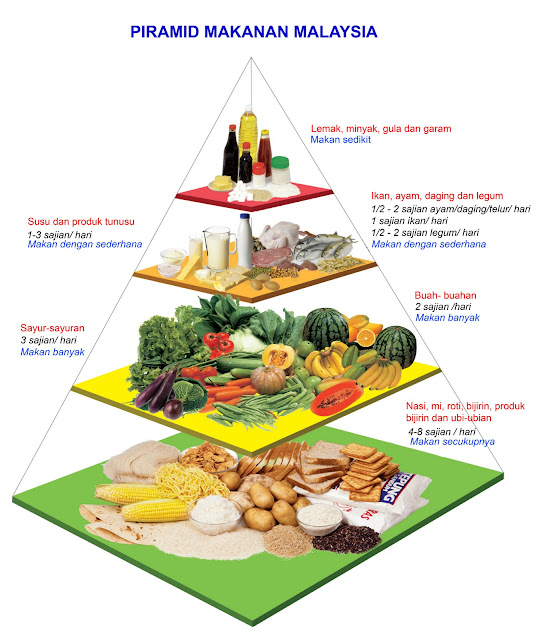 http://3.bp.blogspot.com/_k5tOkIoiv6Y/THzCqAyIymI/AAAAAAAAAK4/7nt8par32Tg/s1600/piramid-makanan2.jpg