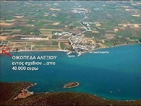 ΠΩΛΟΥΝΤΑΙ παραθαλασσια οικοπεδα ΕΝΤΟΣ ΣΧΕΔΙΟΥ , ΕΚΠΤΩΣΗ 28%,απο 37.000 euro, 140 μ απο την θάλασσα.