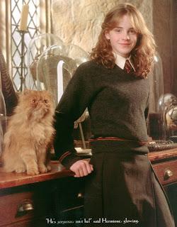 World Of Harry Potter Beberapa Binatang Yang Ada Di Harry