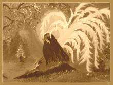 """ANGEL"" -Nancy Velasquez- Cosenza"