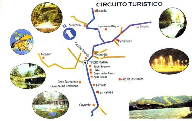 mapa turistico tingo maria