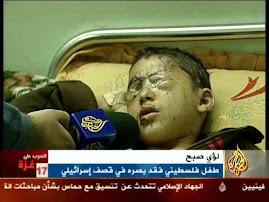 تحقيق في جرائم حرب غزة'