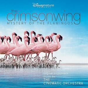The Crimson Wing: Mystery of the Flamingos (2008) - The Crimson Wing: Mystery of the Flamingos (2008
