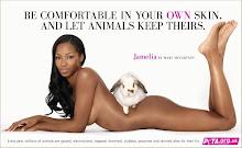 Respect animals