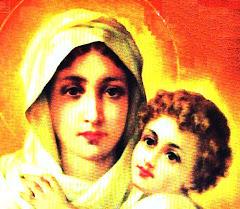 Madre ilumina nuestros pasos
