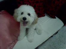 BaObAo my love