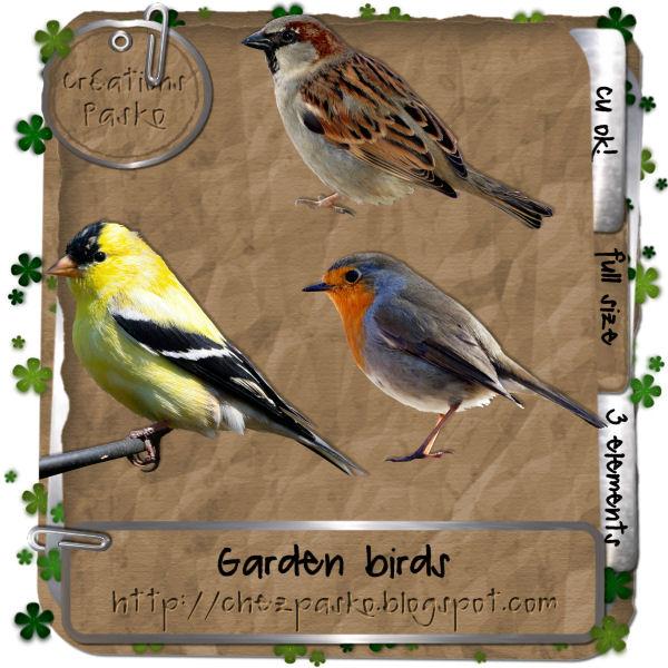 Bird Cage (Aussie Scrap Designs) Pasko_garden_birds_preview