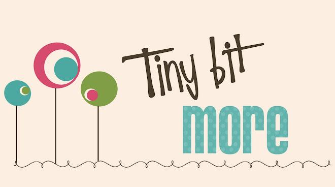 TinyBitMore
