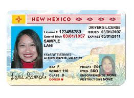 Transgriot New Mexico Making Driver S License Gender