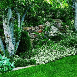 Welcome to gardening designs shade garden for Garden designs for zone 4