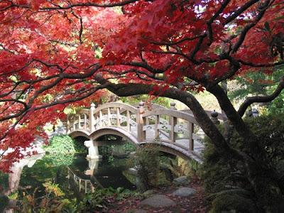 A Japanese Garden Bridge.