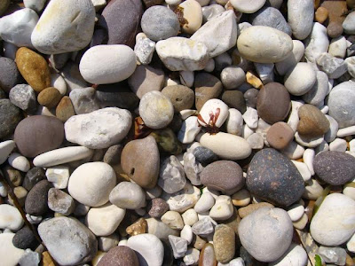 Pebbles on the beach at Flamborough Head