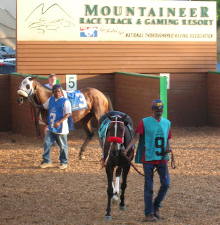 Maggie Slew, the 9 horse, and Water Gap, the 3, before the Decoration Day Handicap at Mountaineer