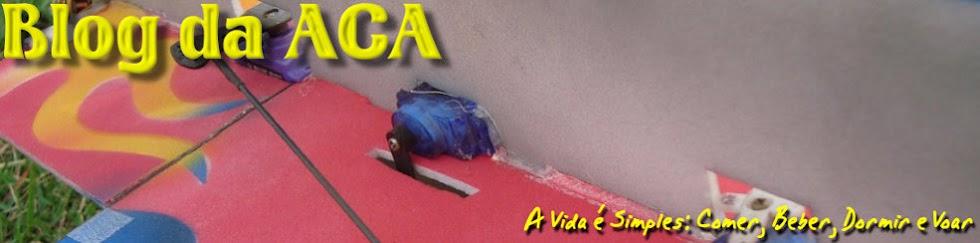 Blog da ACA - Aeromodelismo 3D RC - Congonhas-MG / Brasil