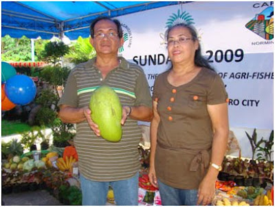 Sergio Bodiongan, with wife Maria Socorro, holds the world's biggest mango,world records 2010,biggest world records