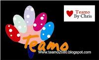 Teamo 2080