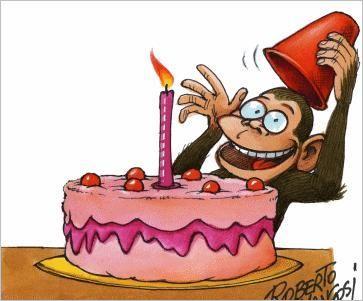 [birthday_monkey.jpg]