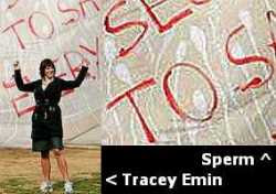 Emin and her Rubbish (2007)