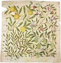 [Morris-Fruit200-50.jpg]