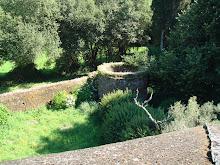El jardín desde la muralla