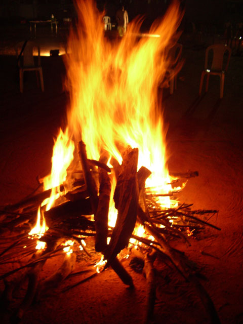 ... and I discussed organizing a Lag B'Omer fire for young adult singles.