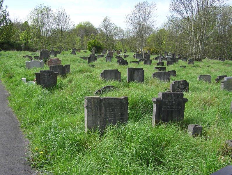 [797px-Arnosvale.grassy.graves.arp]