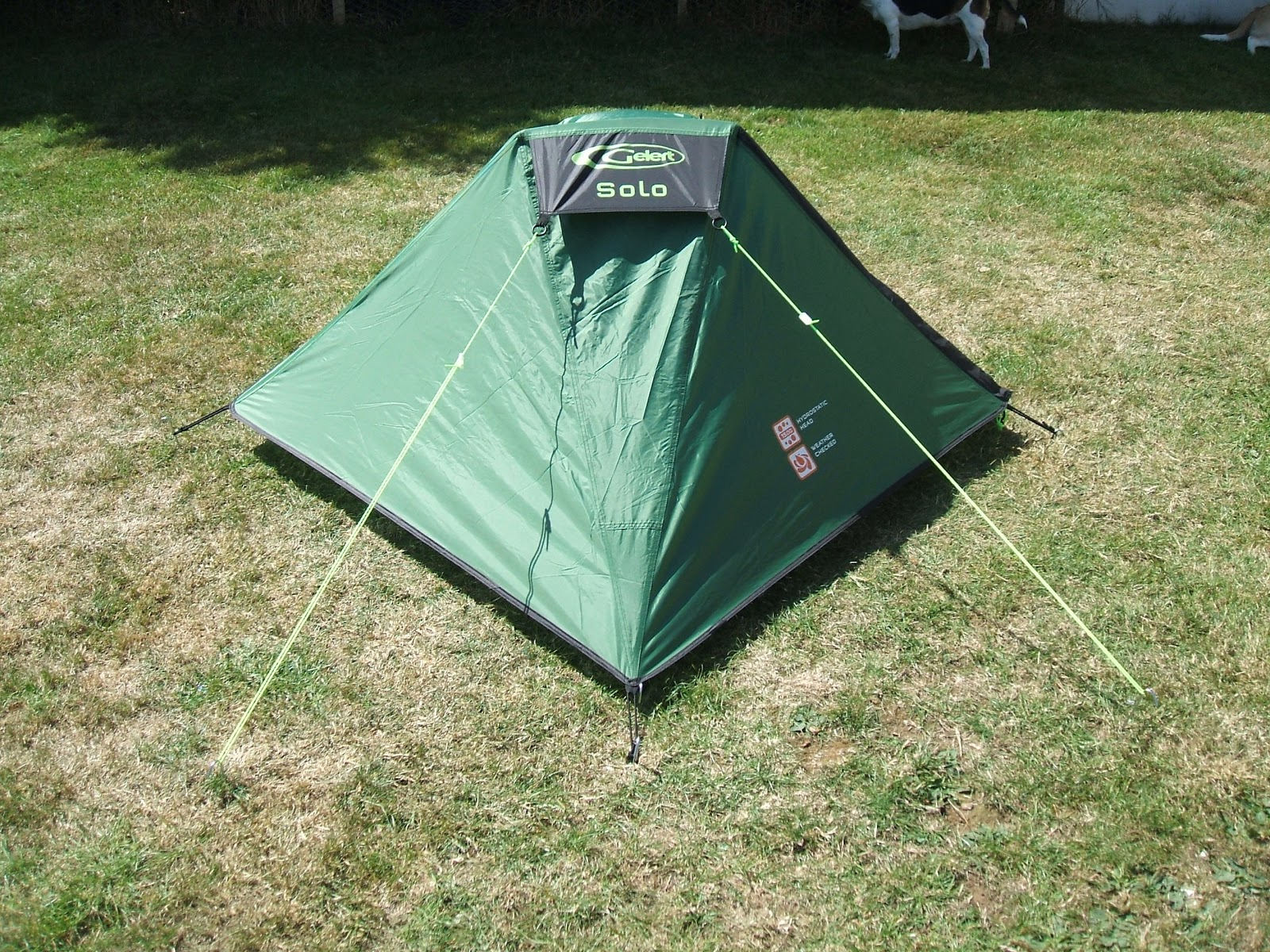 I have just decided that I am getting a little to old for the Tarp / Basha in the Autumn. So I have purchased a cheap lightweight one man tent the Gelert ... & The Bearded Woodshed: Gelert Solo Tent