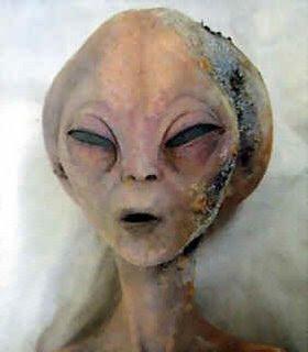 http://3.bp.blogspot.com/_kKSaOCF49jQ/SOsf2Va4yqI/AAAAAAAAAFs/cpytlmQPAHA/s320/grey_alien.jpg