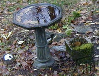 rainy day, water hitting bird bath